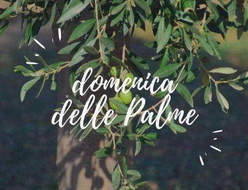 Domenica delle Palme @ Il Cortile